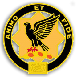 The 1st Squadron, 1st Cavalry Association
